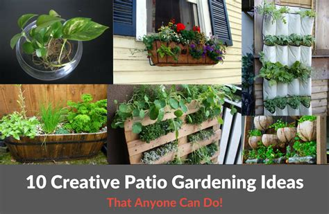 Garden Plot Ideas 10 Creative Patio Gardening Ideas Yardyum Garden Plot Rentals