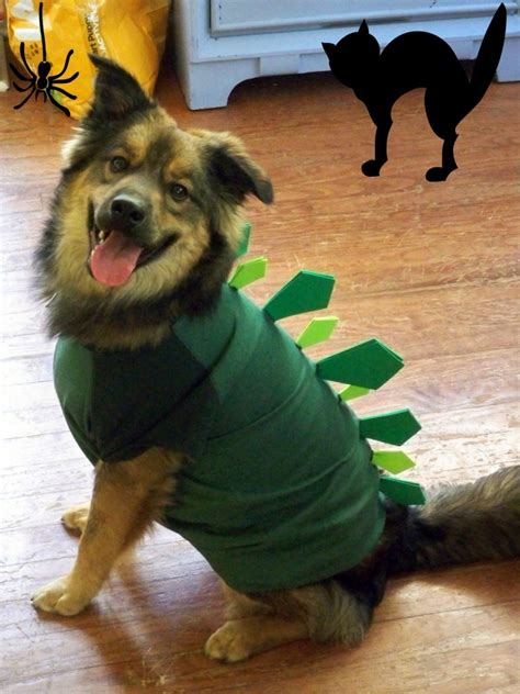 diy puppy costume 20 adorable diy pet costume ideas for 2017