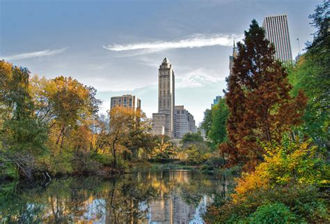 Nature S Pantry New Ny by Nature Travel Tips For New York City 7 Places To