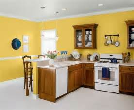 Best Yellow Paint For Kitchen - 17 best images about painting on pinterest dr oz