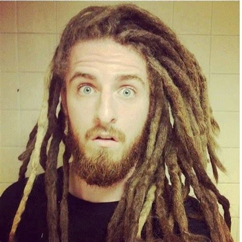 dread lock dreads anaverde dreadlocks