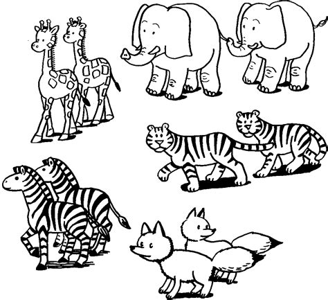 the coloring book for cool who animals books animales salvajes para colorear 2 dibujos
