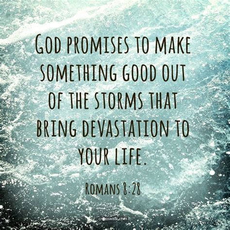 the daily promise 100 ways to feel happy about your books god promises to make something out of the storms