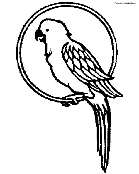parrot coloring page get this parrot coloring pages free printable 9466