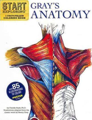 start exploring gray s anatomy freddy stark 9780762440733