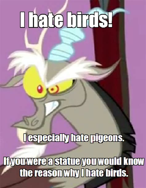 Discord Meme - discord hates birds and especially hates pigeons my