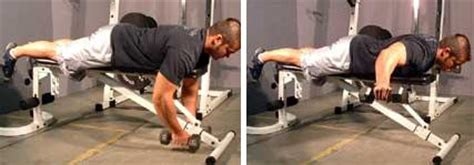 bench flyes rear deltoid exercises and workout pictures
