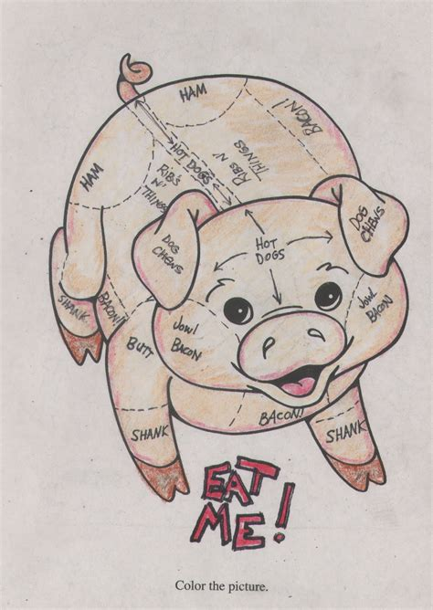 what part of the pig does bacon come from diagram what part of the pig does bacon come from diagram 28