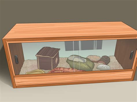 house pets how to house pet snakes 8 steps with pictures wikihow