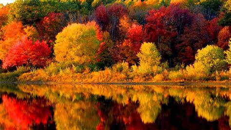 autumn   england   vivaldi youtube