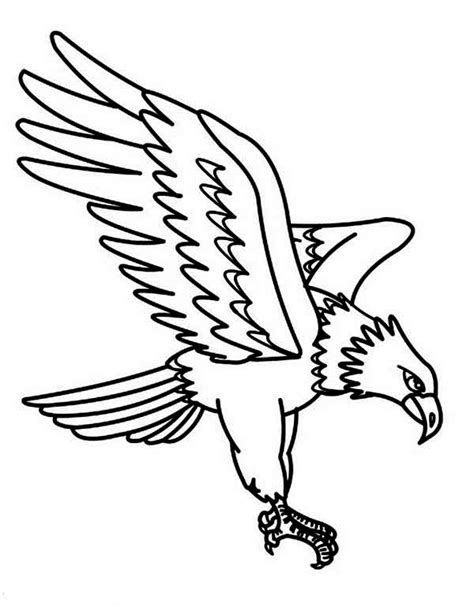 coloring page golden eagle golden free colouring pages