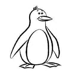 penguin coloring page penguin template animal templates free premium templates