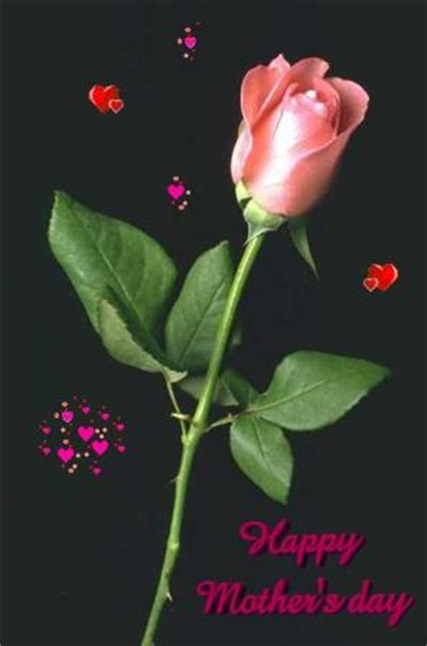 happy mothers day pink rose black background