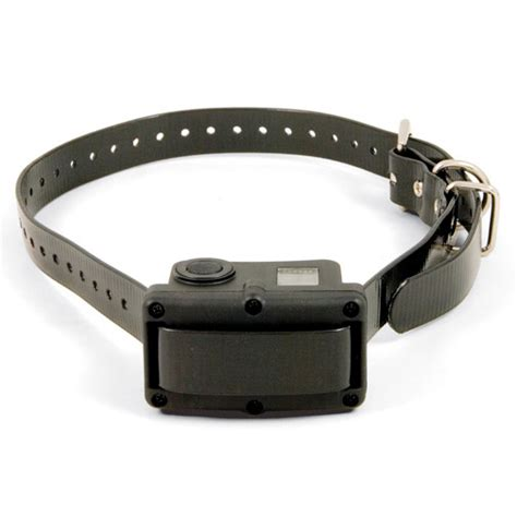 bark collar for large dogs how to housebreak a puppy