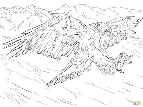 golden eagle attacks coloring page free printable