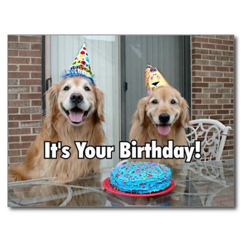 golden retriever birthday cake happy birthday wishes with golden retriever page 2