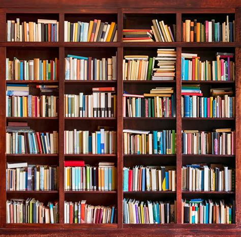 buy wholesale bookshelf backdrop from china