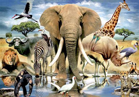 Animal World 7 Tshirtkaosraglananak Oceanseven maandag 7 oktober 2013 mvs begeleiding meedenken