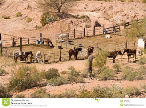 horse corral stock photos horse corral stock images alamy horse corral stock images image 3762664