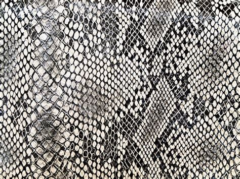 snake pattern black and white black and white background in snake pattern style stock
