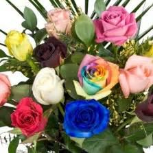 Bibit Tanaman Mawar Mix 10pc Kg benih mawar merah
