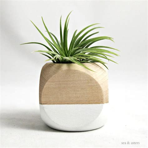 geometric air plant cube planter white natural by sea asters contemporary indoor pots and