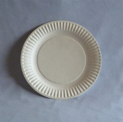 What To Make With Paper Plates - 9 quot paper plate wb plates bowls biodegradable