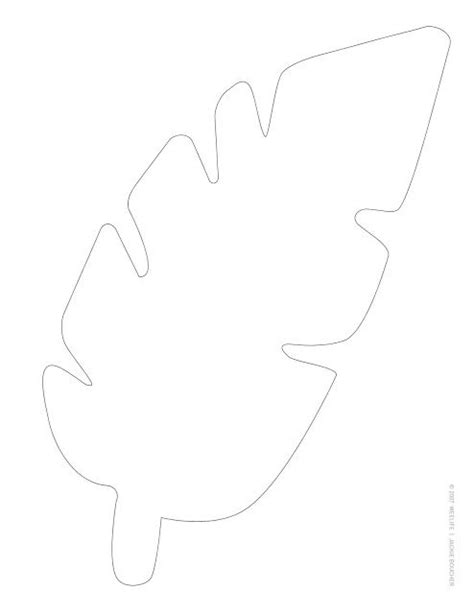 jungle leaf template 25 best ideas about leaf template on leaves