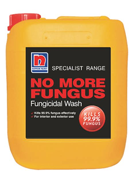 Fungicidal Wash For Interior Walls by Nippon Paint Malaysia Home Decor Renovation Decoration