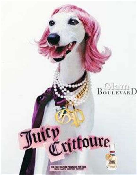 juicy couture dog house juicy couture dog line juicy crittoure