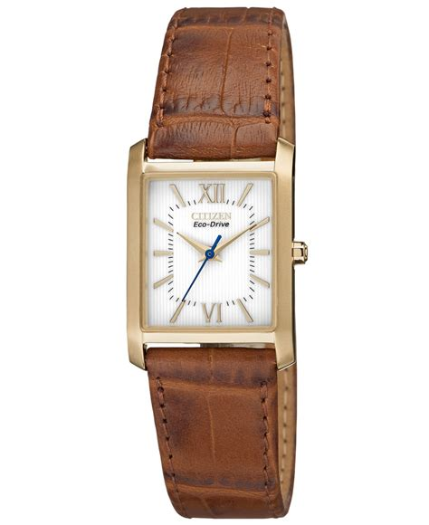citizen s eco drive brown leather