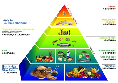 food pyramid about healthy food pyramid racipes for kids plate pictures