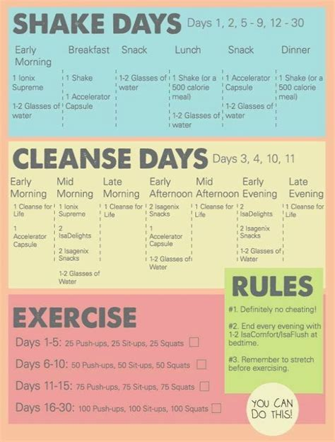 30 Day Detox Plan by Isagenix Nutritional Cleansing System 30 Day Cleanse