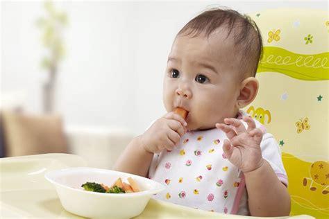 Mangkok Tempat Pembuat Makanan Bayi Multifungsi 5 langkah tepat memilih tempat makan bayi berbahan plastik katalog ibu