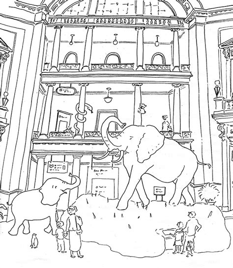 alternative facts an political coloring book books washington dc coloring book pages