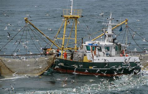 fishing boat companies in south korea n korea seized chinese fishing boat demanded fine
