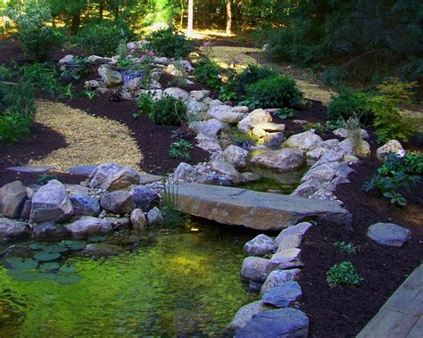 backyard streams custom backyard stream and stone bridge by a yard a half