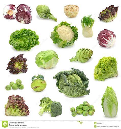 imagenes vegetales verdes repolho e cole 231 227 o vegetal verde fotos de stock imagem