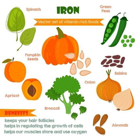 fruit high in iron top 8 foods high in iron list for vegetarians and non