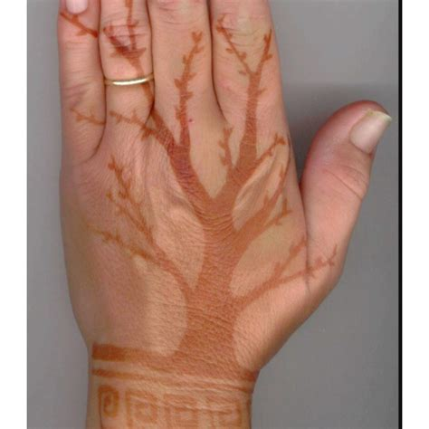 learn how to do henna tattoos 95 best i want to learn how to do henna images on