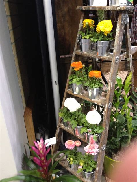 eco chic shabby home decor and gardening