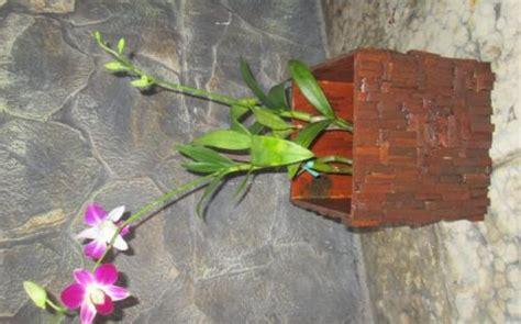 Pot Kayu Untuk Anggrek mbakyu pongrek limbah kayu untuk produk pot bunga anggrek