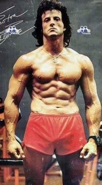 Sly In Steroids by Sylvester Stallone Steroid Cycles Elitefitness