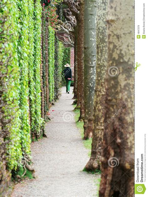 walk in the garden royalty free stock images image 4847379