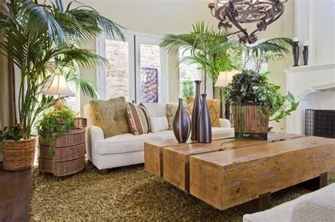 le piante d appartamento piante d appartamento piante appartamento tipologie