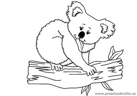 coloring page koala koala coloring pages preschool crafts