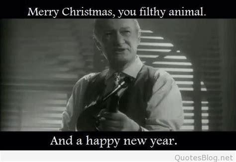 funny happy  year   animals