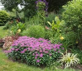 flowers on friday perennial garden up close bird brains dog tales