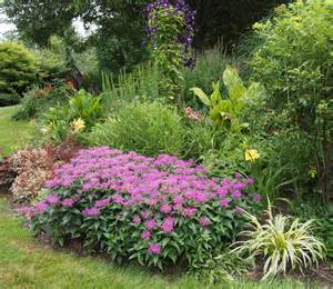 Perennial Garden Flowers Flowers On Friday Perennial Garden Up Bird Brains Tales