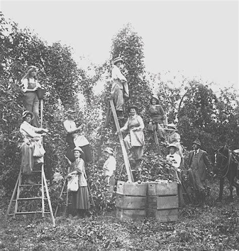 u fruit in kelowna pridham orchard okanagan okanogan